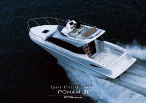 New! PONAM 31 Posters-2 Large